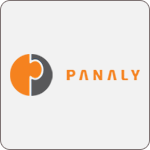 Panaly - Feasibility Study Services